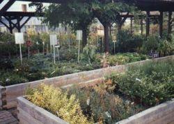 Bild2 1A Garten Ensslin