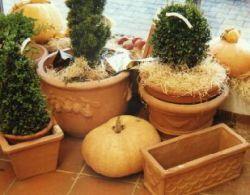 Bild3 1A Garten Ensslin